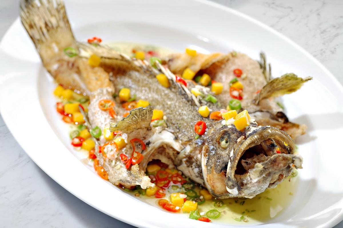 Image Product Live Fish 鱼类
